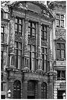 Brewers' guidhall. Brussels, Belgium ( black and white)