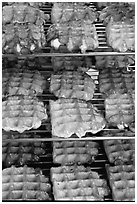 Belgian waffles. Brussels, Belgium (black and white)
