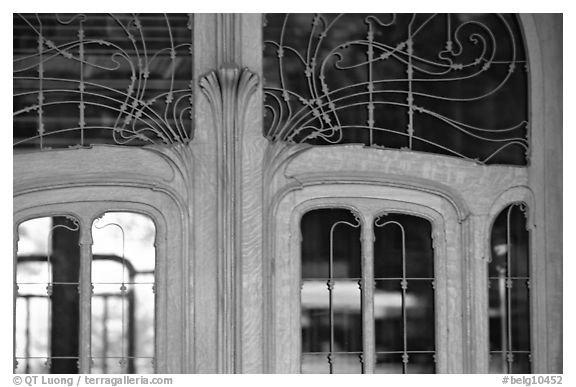 Detail of Art Nouveau door of Hotel Solvay. Brussels, Belgium (black and white)
