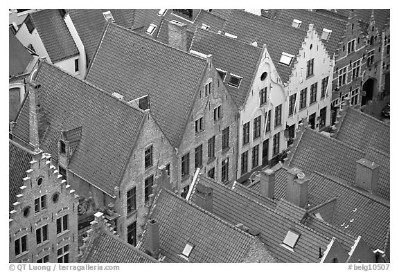 Rooftops. Bruges, Belgium (black and white)
