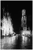 Provinciall Hof and belfry at night. Bruges, Belgium (black and white)