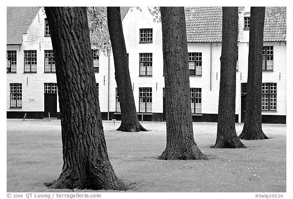 Courtyard of the Begijnhof. Bruges, Belgium (black and white)