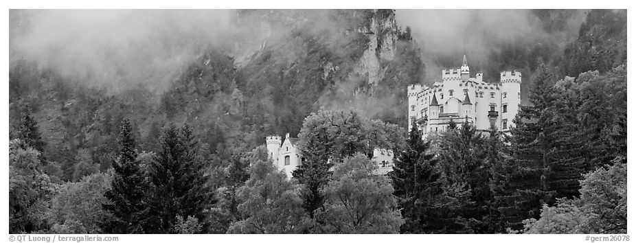 Hohenschwangau castle on forested hillside. Bavaria, Germany (black and white)