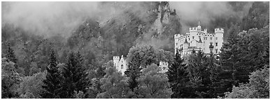 Hohenschwangau castle on forested hillside. Bavaria, Germany (Panoramic black and white)