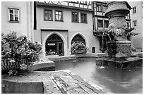 Fountain and houses. Rothenburg ob der Tauber, Bavaria, Germany (black and white)