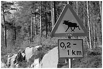Moose crossing sign. Central Sweden (black and white)