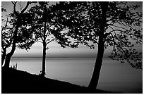 Trees and sunset on Vattern Lake, Vadstena. Gotaland, Sweden ( black and white)