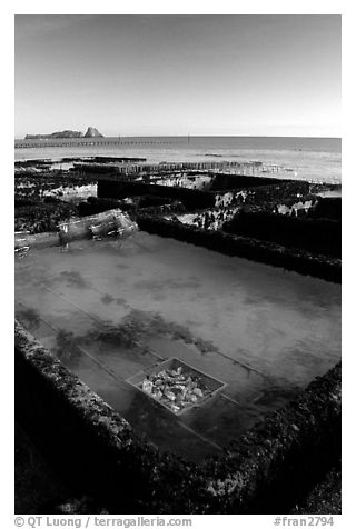 Oyester cages in Cancale. Brittany, France (black and white)