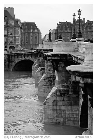 The Pont-neuf. Paris, France (black and white)