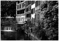 Half-timbered houses next to a canal. Strasbourg, Alsace, France (black and white)