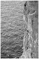 Rock climbing above water in the Calanque de Morgiou. Marseille, France ( black and white)