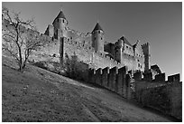 Pictures of Carcassonne