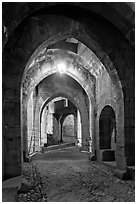 Main entrance of medieval city through drawbridge at night. Carcassonne, France (black and white)
