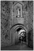 Porte Narbonaise gate by night. Carcassonne, France (black and white)