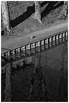 Footpath and reflections, Canal du Midi. Carcassonne, France (black and white)