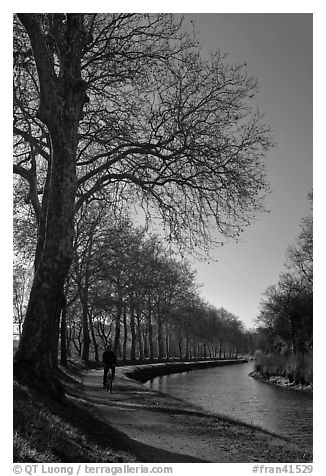 Cyclist along Canal du Midi. Carcassonne, France (black and white)