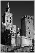 Romanesque Cathedral of Notre-Dame-des-Doms. Avignon, Provence, France ( black and white)