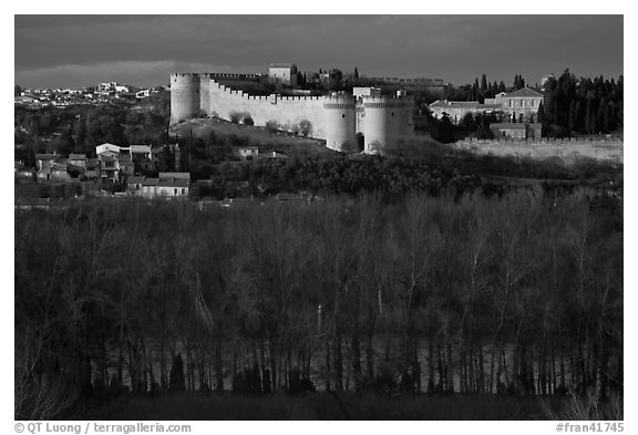 Ramparts across bare trees. Avignon, Provence, France (black and white)