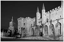 Palace of the Popes and Cathedral at night. Avignon, Provence, France ( black and white)