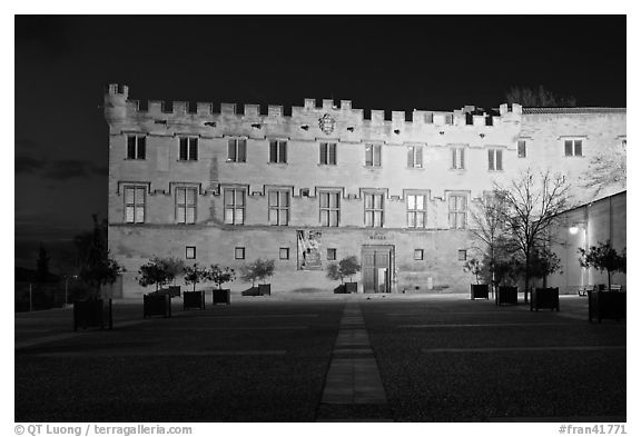 Petit Palais at night. Avignon, Provence, France (black and white)