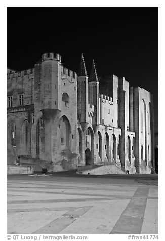 Palace square and Palais des Papes at night. Avignon, Provence, France (black and white)