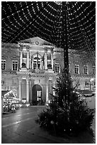 Christmas Tree and City Hall at night. Avignon, Provence, France ( black and white)