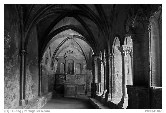 St Trophime cloister. Arles, Provence, France (black and white)