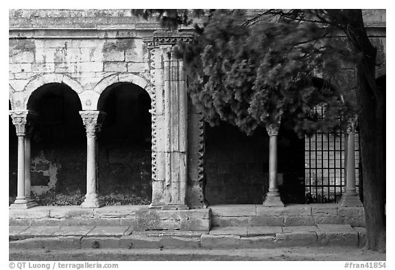 Cloister, Saint Trophimus church. Arles, Provence, France (black and white)