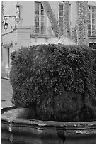 Fountain, Cours Mirabeau. Aix-en-Provence, France ( black and white)