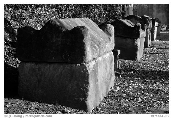 Sarcophagi lining main path, Alyscamps. Arles, Provence, France (black and white)