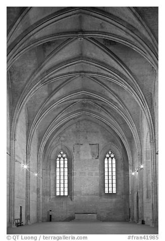 Chapel, Palace of the Popes. Avignon, Provence, France (black and white)
