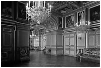 Entrance of the Louis 13 room, Fontainebleau Palace. France ( black and white)
