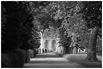 Forested alley and palace, Fontainebleau Palace. France (black and white)