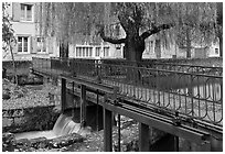 Bridge above canal lock and willow, Chartres. France (black and white)