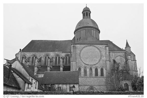 Mossy roofs and dome, Saint Quiriace Collegiate Church, Provins. France (black and white)