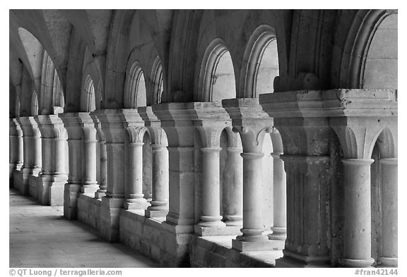 Cloister columns, Abbaye de Fontenay. Burgundy, France (black and white)