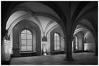 Rib-vaults, monks room, Cistercian Abbey of Fontenay. Burgundy, France (black and white)