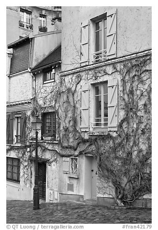 House with blue shutters and bare ivy, Montmartre. Paris, France (black and white)