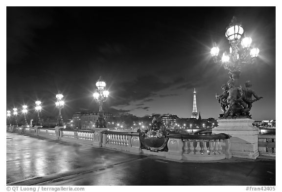 Lamps on Pont Alexandre III by night. Paris, France (black and white)