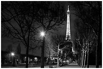 Trees in Champs de Mars and Eiffel Tower at night. Paris, France ( black and white)