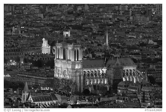 Notre-Dame de Paris Cathedral from above at night. Paris, France (black and white)