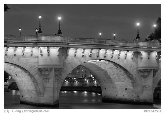 Pont-Neuf and lights by night. Paris, France (black and white)