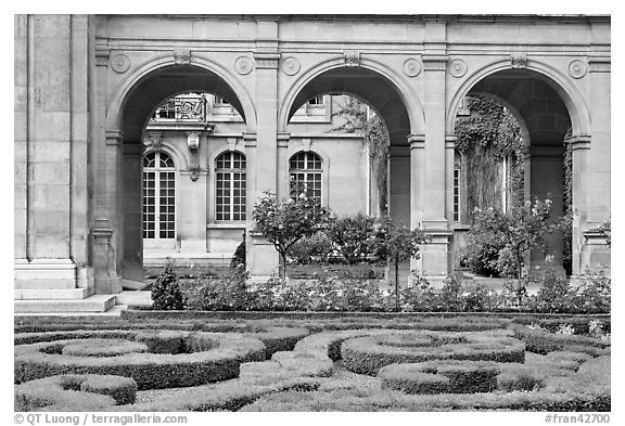 Hedges and roses in courtyard of hotel particulier. Paris, France (black and white)