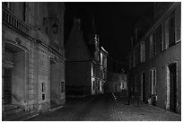 Projection on Palais Jacques Coeur and blue light in the streets. Bourges, Berry, France ( black and white)