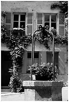 Flowers on a well, old  Vezelay. Burgundy, France (black and white)
