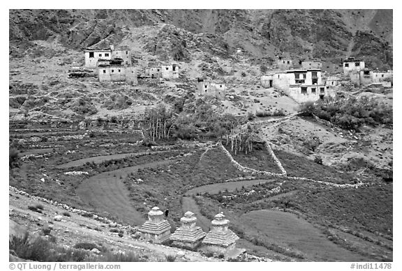Chortens, cultivated terraces,  and village, Zanskar, Jammu and Kashmir. India (black and white)