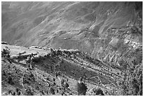 Verdant valley, Lahaul, Himachal Pradesh. India ( black and white)