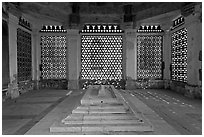 Tomb of Imam Zamin, Qutb complex. New Delhi, India (black and white)