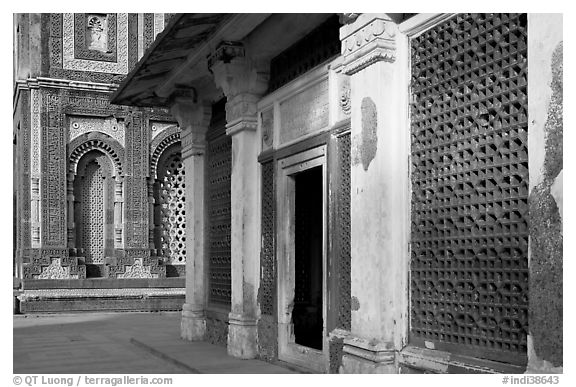 Detail of tomb of Imam Zamin and  Alai Darweza gate, Qutb complex. New Delhi, India (black and white)