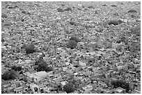 Whitewashed indigo tinted houses seen from above at dusk. Jodhpur, Rajasthan, India ( black and white)